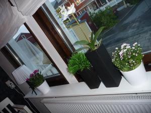 Köksfönster efter